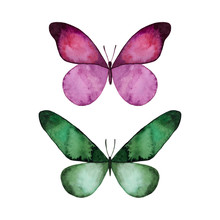 Watercolor Colorful Butterflies Set, Isolated On White Background. Pink And Green Butterfly Illustration. Design For Card, Invitation, Greeting, Letter, Poster, Cover.