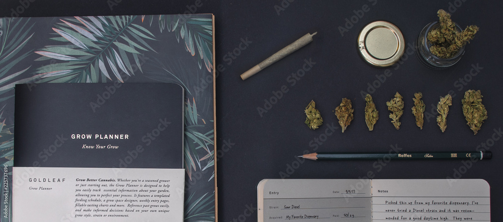 Fototapety, obrazy: Top view of stationery and cannabis with a joint and jar flat lay