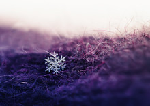 Small Beautiful Shiny Snowflake Dropped On A Warm Lilac Knitted Wool Fabric