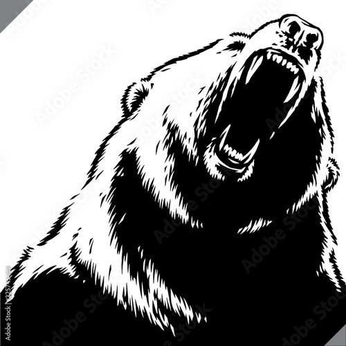 engrave isolated bear illustration vector sketch linear art Fotomurales