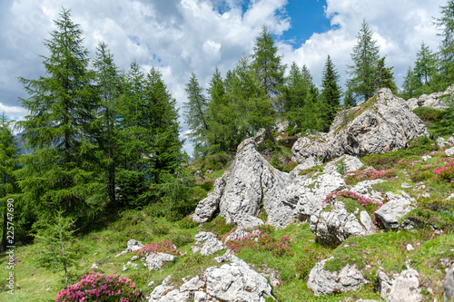 Mountain Scenery of the Italian Dolomites on a summers Afternoon