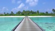 Loop of Beautiful white sand beaches and palm trees in Maldives