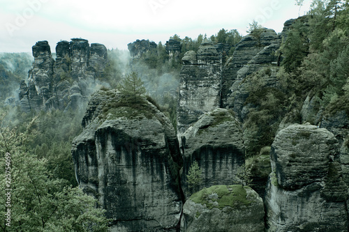 Poster Kaki Rocky mountain view during autumn season. Foggy sunrise at Bastei, Saxon Switzerland, Germany. Misty landscape with fir forest in hipster vintage retro style