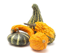 Group Of Five Different Gourds...