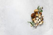 Organic Porcini Mushroom. Seasonal Forest Mushroom, Italian And Spices.