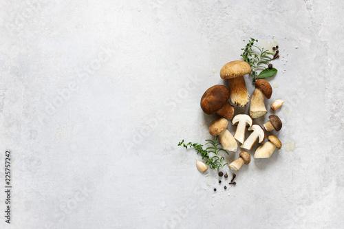 Fototapeta Organic porcini mushroom. Seasonal forest mushroom, Italian and spices. obraz