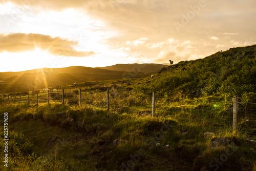 Canvas Prints Arizona Sonnenuntergang Schottland Isle of Skye
