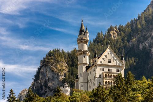 Foto op Plexiglas Historisch geb. Neuschwanstein Castle Germany - Schwangau Bavaria