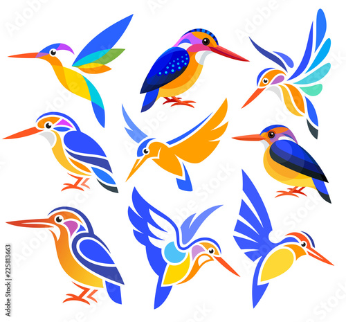 Canvas-taulu Set of Stylized Birds - African Pygmy Kingfisher in different styles