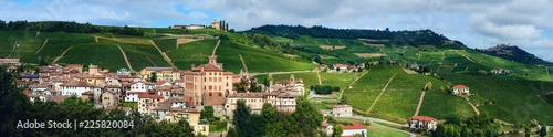 Panorama of Barolo (Piedmont, Italy) with the town, the medieval castle and the vineyards Wallpaper Mural