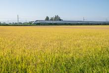 山形新幹線  Bullet Train,Yamagata,Japan