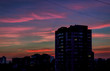 sunset in the modern city, purple paints, Beautiful sunset
