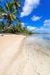 Karibik pur: Ferien, Tourismus, Sommer, Sonne, Strand, Auszeit, Meer, Glück, glitzernde Wasseroberfläche, Entspannung, Meditation: Traumurlaub an einem einsamen, karibischen Strand :)