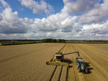 Tractor And Combine Harvester Harvesting Wheat Field, Elevated View