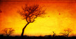 canvas print picture - African sunset in the Kruger National Park, South Africa
