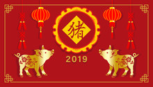 """2019, Year Of The Pig ,Chinese New Year's Greeting Card Design, Two Pigs And Lantern Decoration - Chinese Words Mean """" Pig """""""