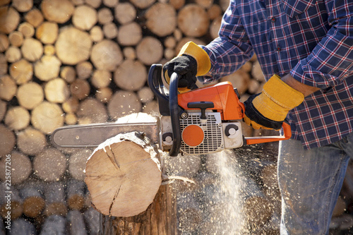Obraz The worker works with a chainsaw. Chainsaw close up. Woodcutter saws tree with chainsaw on sawmill. Chainsaw in action cutting wood. Man cutting wood with saw, dust and movements. - fototapety do salonu