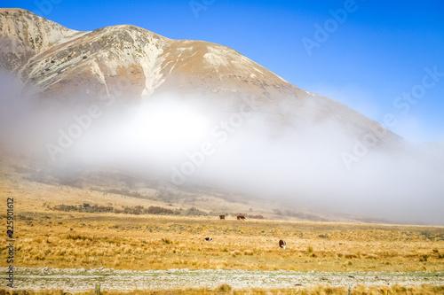 Foto op Plexiglas Oceanië Mountain fields landscape in New Zealand