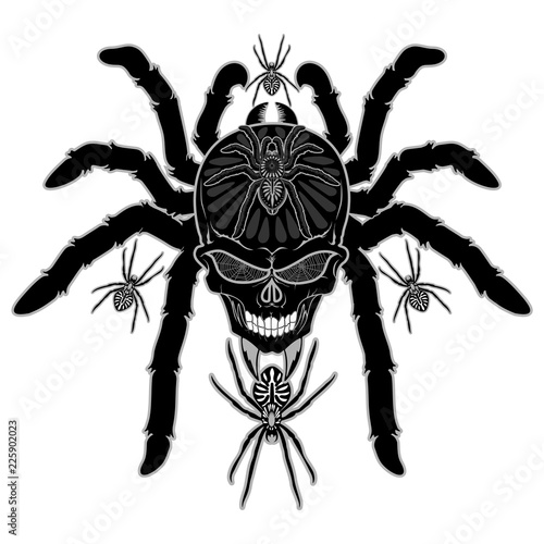 Spoed Foto op Canvas Draw Spider Skull Tattoo Black and White