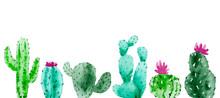 Set Of Watercolor Cactus, Succ...