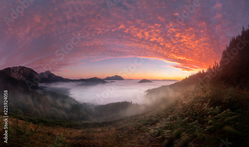 Poster Bordeaux Colorful sunrise over Aramaiona valley under the fog in Alava