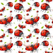 Seamless Pattern Of Ladybug
