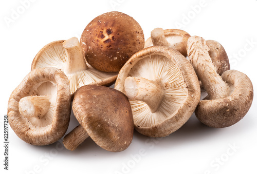 Shiitake mushrooms on the white background.