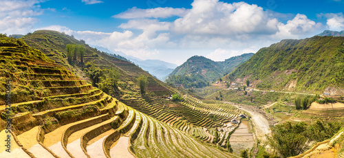 Fotobehang Rijstvelden Terraced rice field in Sapa