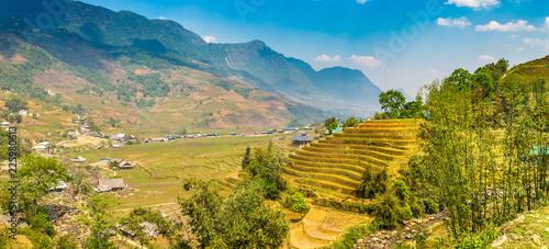 Fotobehang Rijstvelden Terraced rice field in Sapa