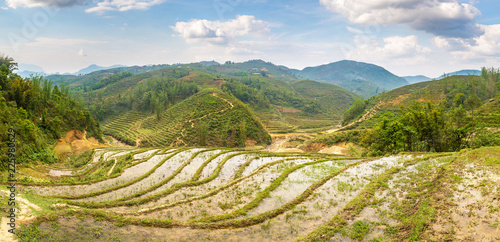 Poster Rijstvelden Terraced rice field in Sapa