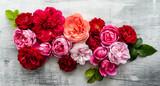 nice fresh roses
