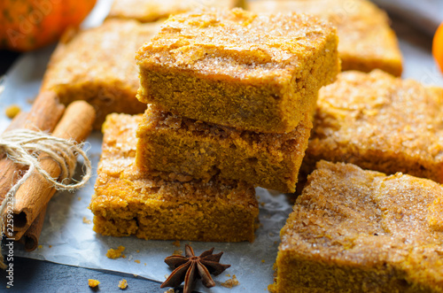 Pumpkin Bars with Cinnamon Sugar Crust, Freshly Baked Pumpkin Blondies