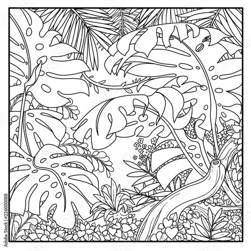 Wild jungle with big palm leaves and branch black contour ...