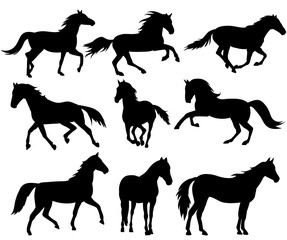 silhouette horse running, collection