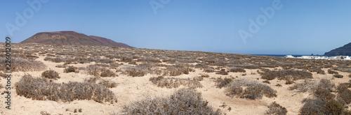Lanzarote, Isole Canarie: strada sterrata, cespugli e paesaggio desertico con la Tablou Canvas