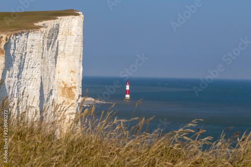 Fotografie, Obraz  Beachy head cliff and lighthouse