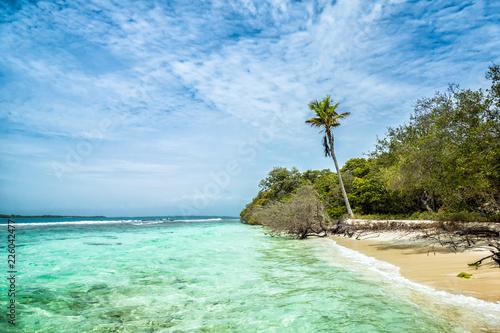 Valokuva  Tropical paradise beach background