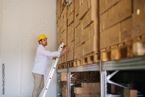 Fototapeta Picture of young hard working man in warehouse standing on ladders and counting boxes