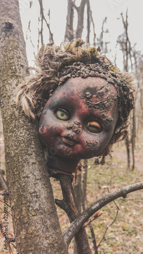 Photo Old damaged burnt head from a baby doll on a tree