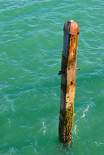 Wooden Poles & Structures
