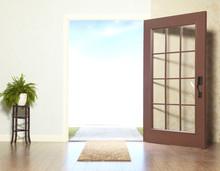 Open Door And Plant