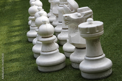 Fotografie, Obraz  Big chess pieces in the park.
