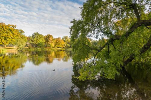 Photo Herbst im Arthur Bretschneider Park in Leipzig