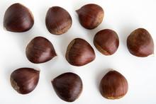 Japanese Chestnut Image