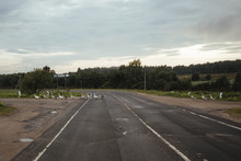 Geese Crossing Country Road Against Sky