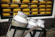 Artisan Edam Cheese