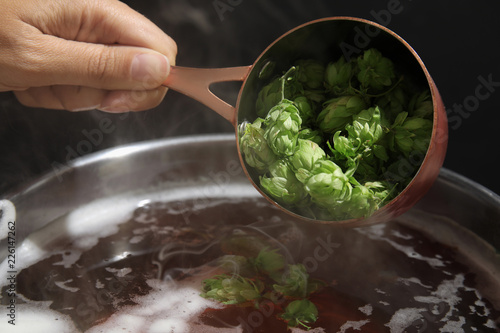 Photo Woman adding fresh green hops to beer wort in pot, closeup