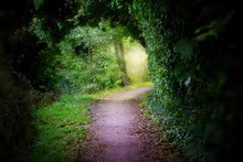Landscape View Of Secret Pathway To The Light