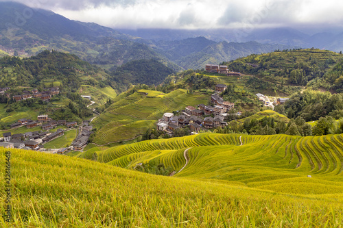 Deurstickers Honing Terraces rice china