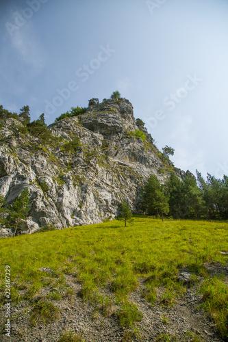 Spoed Foto op Canvas Natuur A beautiful landscape of cliffs in forest in Low Tatra region. Sunny day, colorful scenery in Slovakia, Europe.